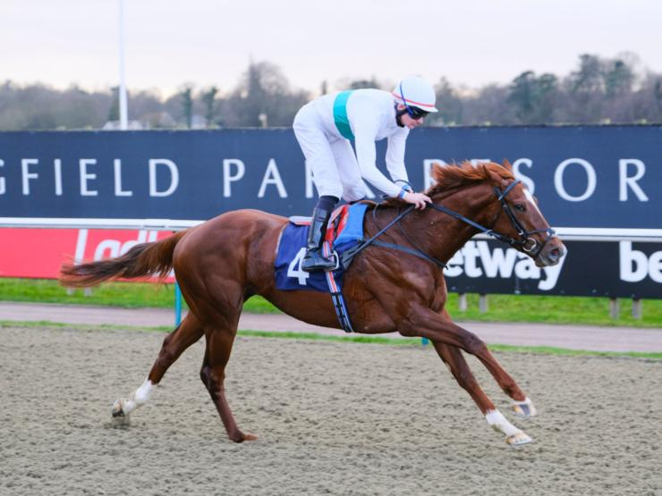 Robert Havlin, on the road to recovery after a crashing fall at Kempton Park, pictured winning at Lingfield Park on Easter Classic favourite Wissahickon