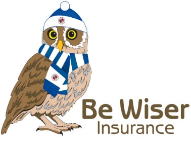 Be Wiser owl dressed with Reading FC outfit