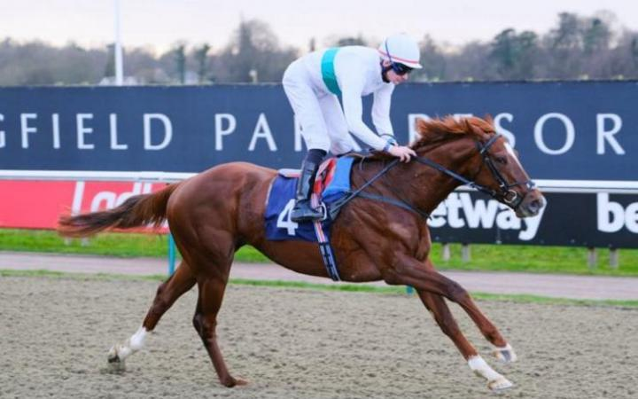 Wissahickon is out to make himself the undisputed Middle Distance king when he runs in the £200,000 Easter Classic at Lingfield Park on Good Friday.
