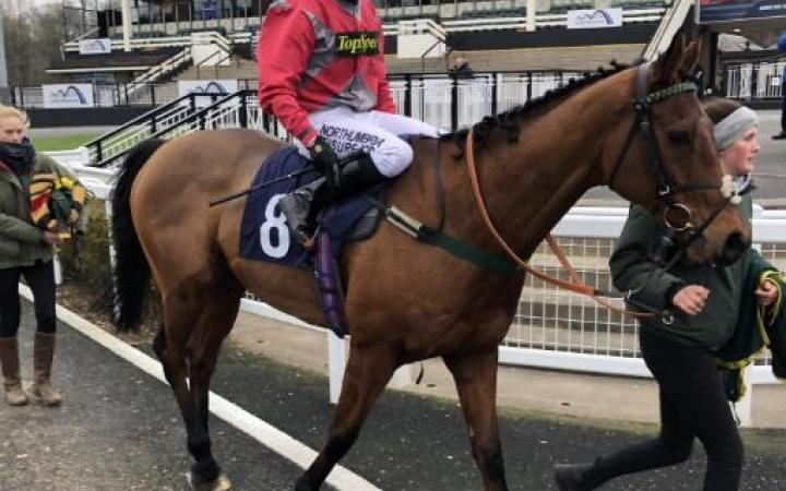 Robert Winston returns to the winner's enclosure at Newcastle on Fast Track Qualifier winner Stargazer.