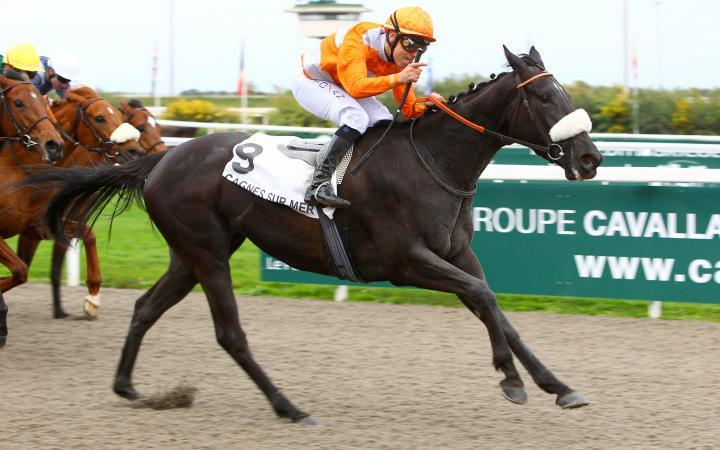 Unbeaten filly Marie D'Argent wins the French Fast Track Qualifier for the Mile Final at Easter at Cagnes Sur Mer last weekend.