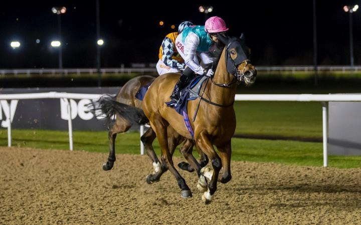 Star Archer Romps Away With Wolverhampton Race
